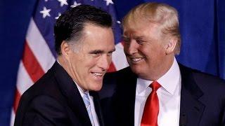 Download Why Top Trump Advisor Hates Mitt Romney Video