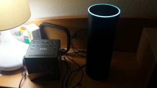 Download Alexa, Do You Work For the Government? Video