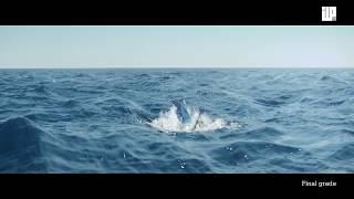Download CGI Vfx Breakdown HD: Making of Kon-tiki by ILP Video