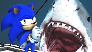 Download Sonic in JAWS Video