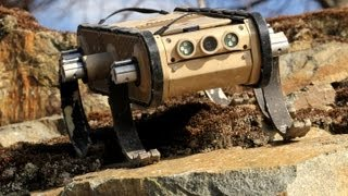 Download RHex Rough-Terrain Robot Video