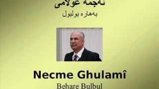Download Necme Ghulamî - Behare Bulbul Video