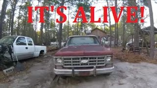 Download 1977 Chevrolet 4x4 First Start in 16 Years! Video