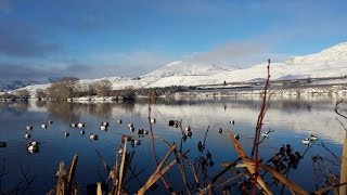 Download Waterfowl Hunting: Waterfowl Evolution on The Columbia River Episode 6 Full Video