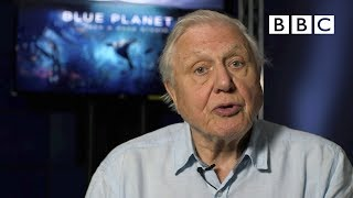 Download Sir David Attenborough's plastic message - BBC Video