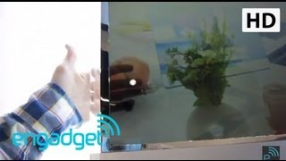 Download Samsung 22-inch Transparent Blu LCD TV | Engadget at SID 2011 Video