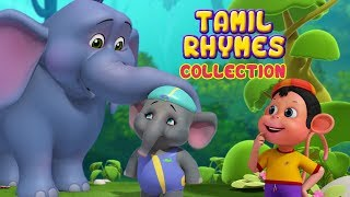 Download சின்ன யானை and more Animal Rhymes | Tamil Rhymes for Children | Infobells Video