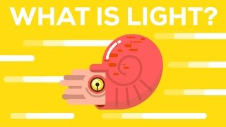 Download What Is Light? Video