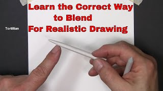 Download Pencil Drawing - Blending and Shading - Learn to blend and shade your drawings Video