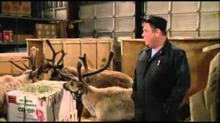 Download Ernest Saves Christmas - Part 4 of 9 Video