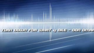 Download Turn Down For What y Dile - Don Omar Video