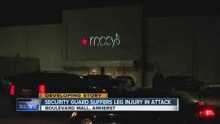 Download Shoplifter stabs security guard at Boulevard Mall Video