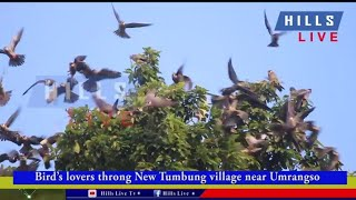 Download Bird's lovers throng New Tumbung village near Umrangso Video
