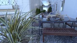 Download 1080 Chestnut Street | Residence 1A Video