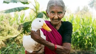 Download Duck curry prepared by my Granny's || Country Foods Video