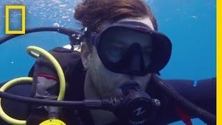 Download Coral Bleaching in the Great Barrier Reef | Years of Living Dangerously Video