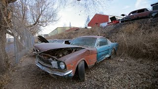 Download Steve Spots a 1965 Mustang 2+2 Fastback - Junkyard Gold Preview Ep. 4 Video