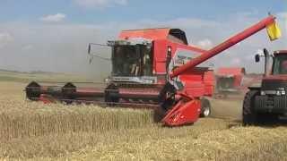 Download Žně Pšenice AgroMonet 2014 Video