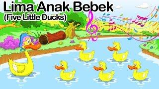Download Lima Anak Bebek ( Five little ducks )   Lagu Anak Indonesia Video