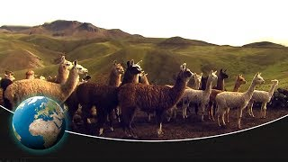 Download The Pan-American Highway - From Peru to Tierra del Fuego Video
