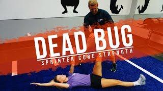 Download Sprinter CORE Strength | The DeadBug Video