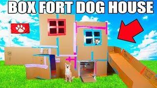 Download TWO STORY BOX FORT DOG HOUSE! 📦🐶 Elevator, Slide, Tv & More! Video