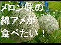 Download 綿菓子機買ってみた&メロン味編 Video