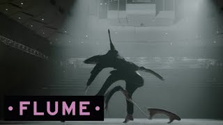 Download Flume - Some Minds feat. Andrew Wyatt Video