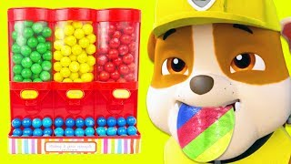 Download Learn Colors with Paw Patrol Gumballs Video