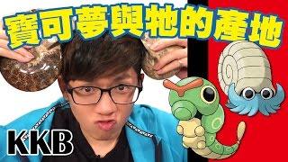 Download 《寶可夢在現實中的真面目!!》 │ 酷酷兄弟 生活大爆炸 Video