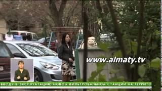 Download Суррогатное материнство в Казахстане Video