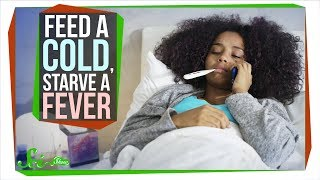Download Should You Really 'Feed a Cold, Starve a Fever'? Video