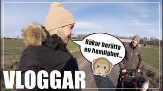 Download DEN OREDIGERADE VLOGGEN ÄR HÄR! | VLOGG Video