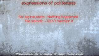 Download Polish Course - Lesson 3 Popular words & phrases Video