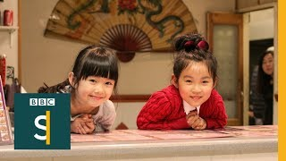 Download Meet the kids who grew up in Chinese takeaways - BBC Stories Video