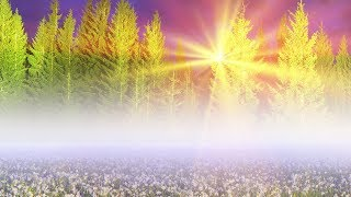 Download Peaceful Music, Relaxing Music, Instrumental Music ″Nature's Peace' by Tim Janis Video