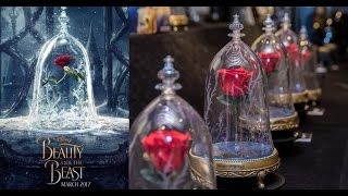 Download First Look! Camino- Beauty and the Beast Enchanted Rose Speaker Video