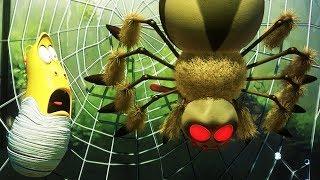 Download LARVA - SPIDER | Cartoon Movie | Cartoons For Children | Larva Cartoon | LARVA Official Video