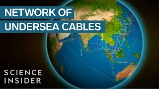 Download Animated map shows the undersea cables that power the internet Video