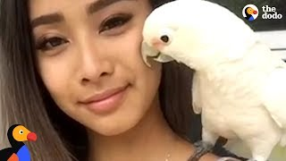 Download Rescue Cockatoo Loves Sunbathing and Dancing With Mom | The Dodo Video
