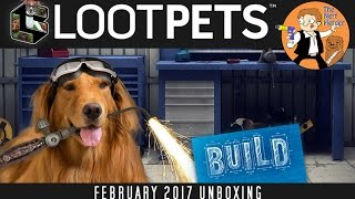 Download Loot Pets ″Build″ Unboxing & Review - February 2017 Video