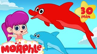 Download My magic dolphin Morphle plays with the mermaid girl Video