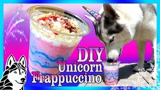 Download DIY UNICORN FRAPPUCCINO FOR DOGS | DIY Dog Treats | Snow Dogs Snacks 72 Video