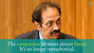 Download Mirror Neurons - Brain Science of Compassion Video