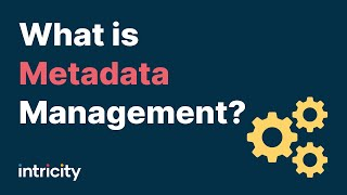 Download What is Metadata Management? Video