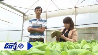 Download Bỗng dưng thành tỷ phú nhờ trồng rau thủy canh | VTC Video