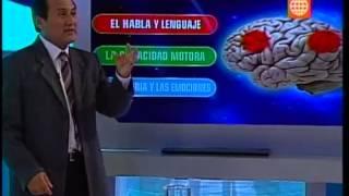 Download Dr. TV Perú (28-10-2013) - B1 - Tema del día: Derrame cerebral Video