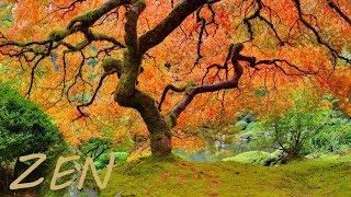 Download Zen Garden Relaxing Music and Nature - Asian Far East Instruments Video