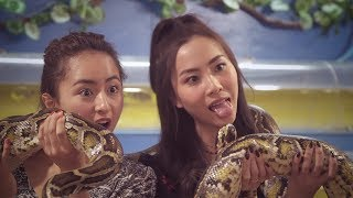 Download HABU HABU anyone? SONIA and JULIA's snake encounters in OKINAWA! WING IT! Video