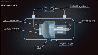 Download X Ray Production Animation Video